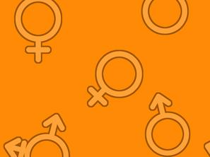 Sexual Orientation Basics