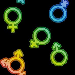 Gender Background Rainbow.png
