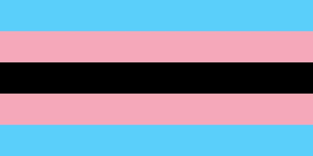 Black Transgender Pride Flag (2015)