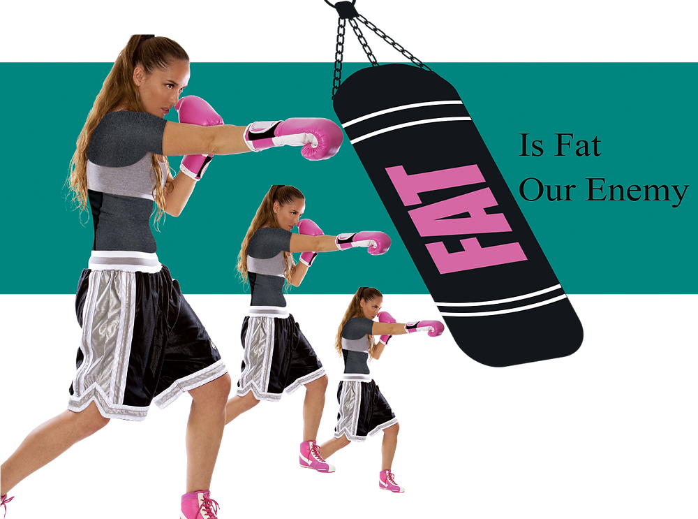 perfect fit magazine is fat our enemy?