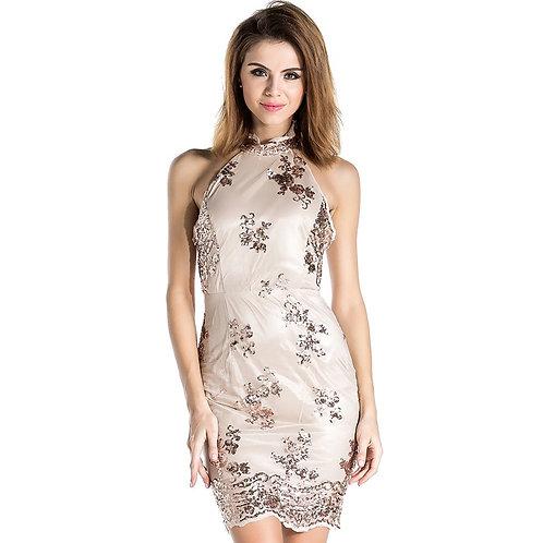 Embellished High Neck Sequin Dress