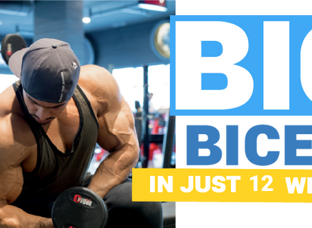 BIG BICEPS IN JUST 12 WEEKS