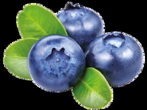 """Superfoods """"التوت الأزرق"""" العنب البري"""