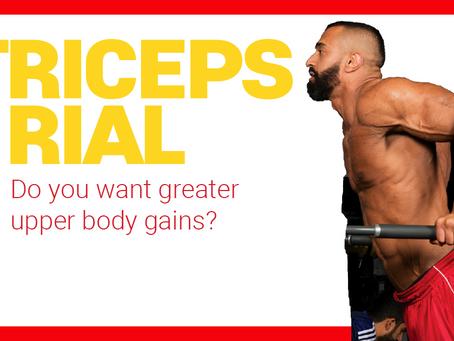 Triceps Trial (12 week workout)