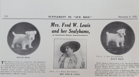 Mrs Fred W. Lewis and her Sealyhams
