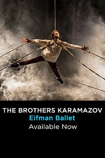 The Brothers Karamazov_.jpg