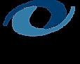 NACE-logo-300x239.png