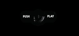 2019 PPA Logo.png
