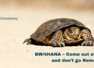 "BW/4HANA – ""Come out of your 'Shell' and don't go 'Remote'""!!"