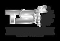 TSO-1b.png