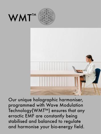 WMT text info.jpg