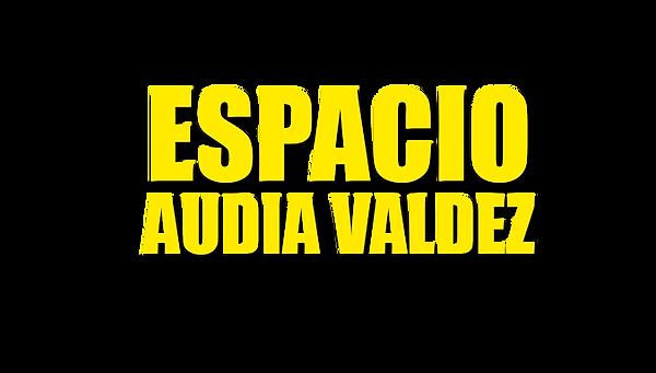 Espacio-Audia-logo-png2.png