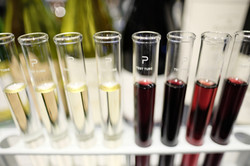 試験管 ワイン 飲み比べ
