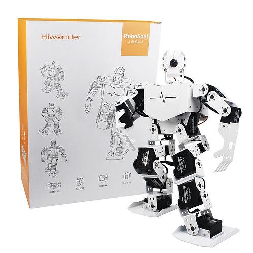 TonyPi - HiWonder AI智能可視人形機器人 (4G)