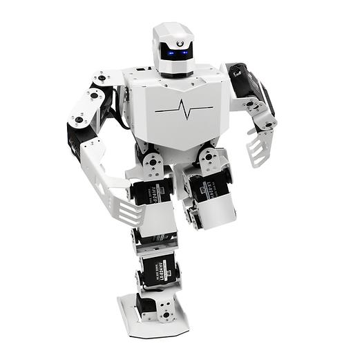 RoboSoul H5S 智能人形舞蹈機器人 - HiWonder Robot