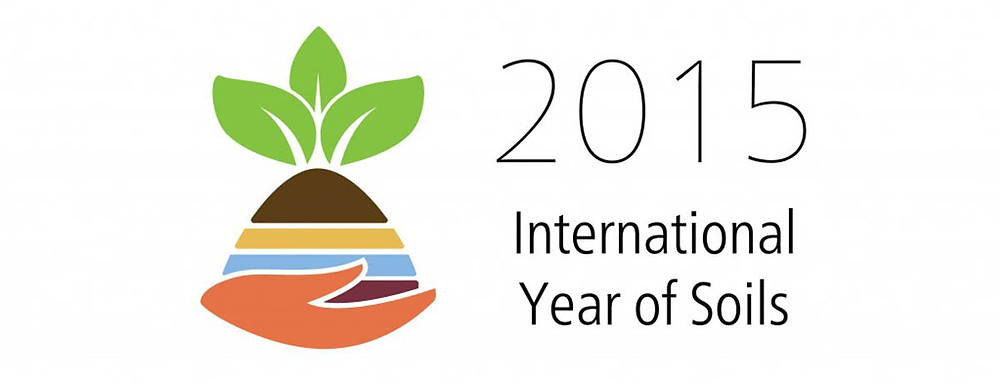 LOGO_IYS_en_Print year of soil