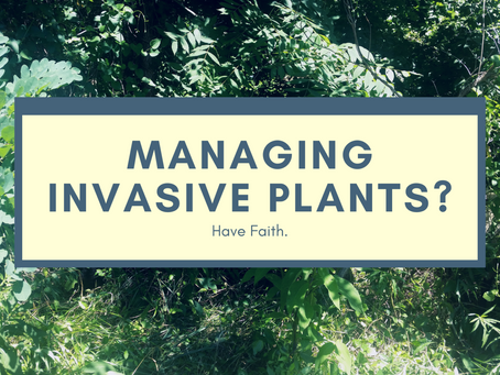Managing Invasive Plants? Have Faith.