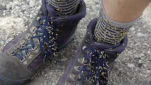 seeds stuck to the shoelaces of hiking boots