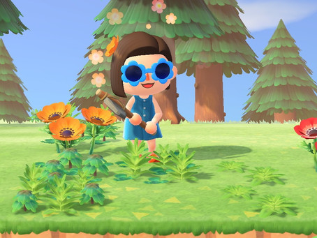 The Real-Life Useful Plants Behind the Weeds in Animal Crossing New Horizons