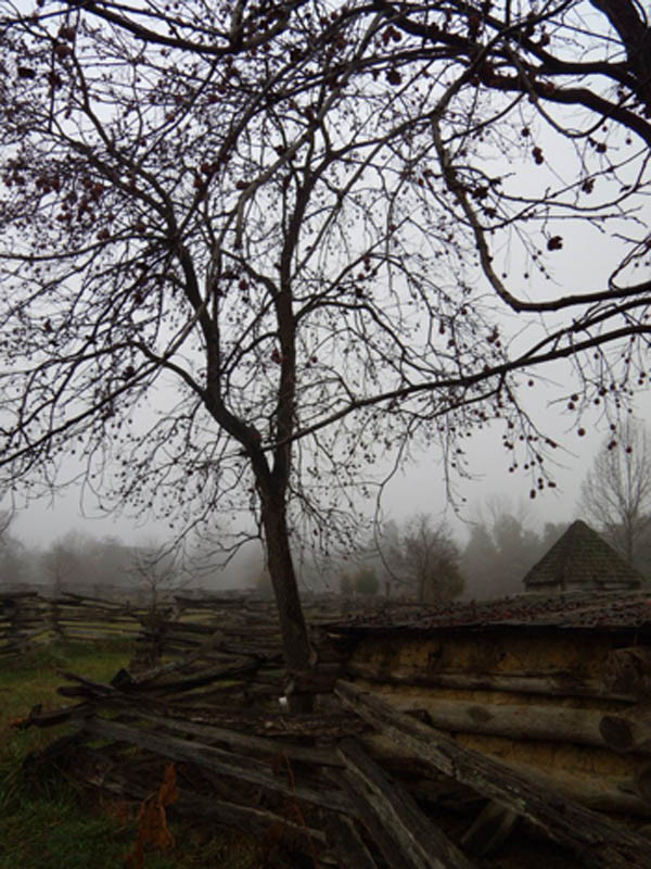 Mist over the National Colonial Farm site