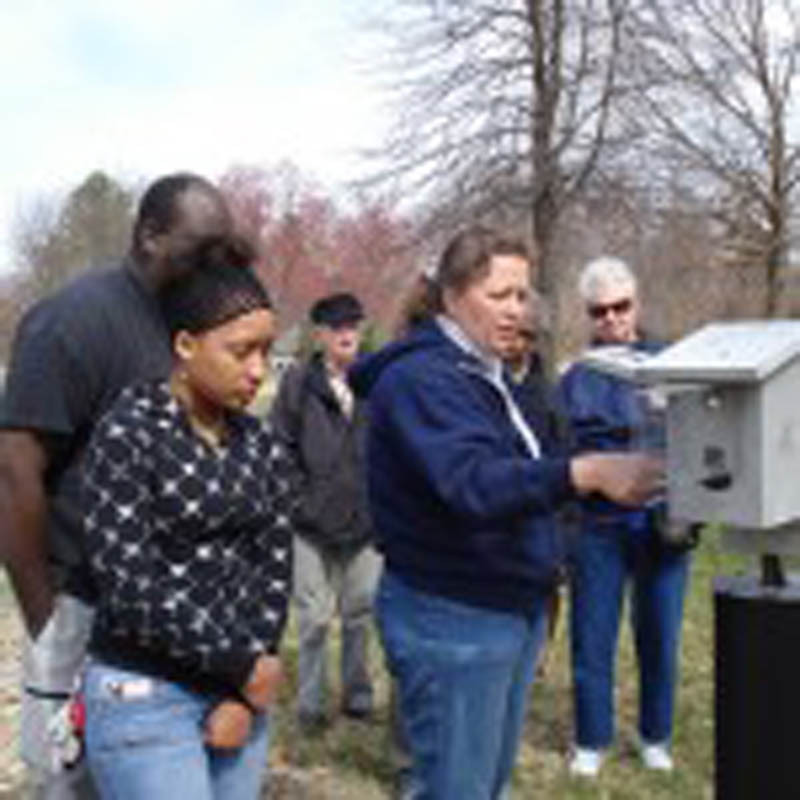 monitoring bluebirds at piscatway park