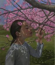 Cherry Blossoms, National Colonial Farm