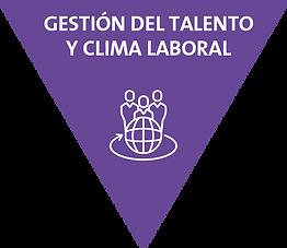 Proqualitas gestión del talento y clima laboral