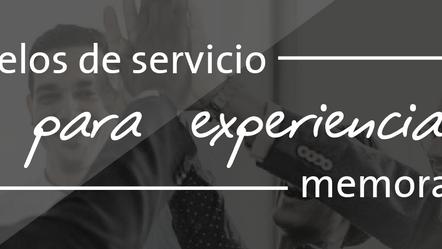 ¿Por qué es importante contar con un modelo de servicio dentro de las organizaciones?