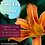 Thumbnail: Tiger Lily flower essence