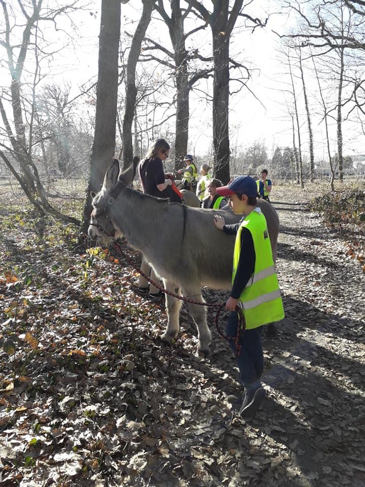 faire plaisir aux ânes aussi!