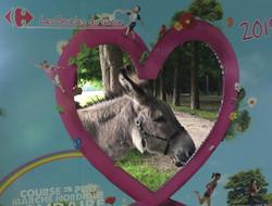 les ânes et leurs aniers ont coeur !