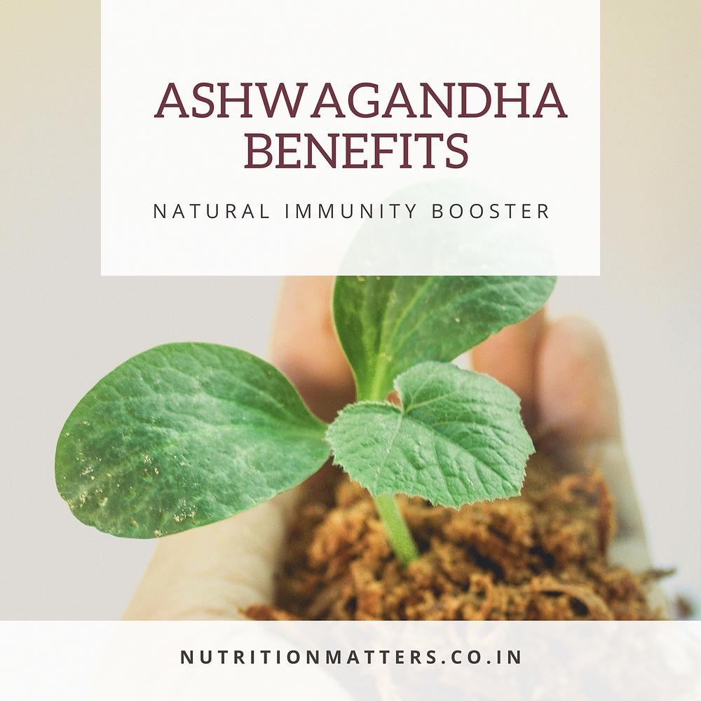 Ashwagandha  Natural immunity booster build immunity ayurveda