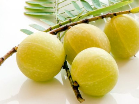Amla - The Indian Gooseberry
