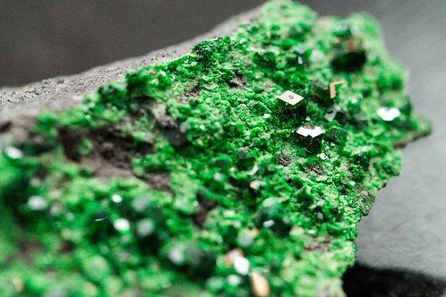 Uvarovite Garnet Crystals on Matrix