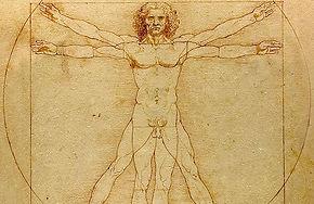 Leonardo's Vitruvian Man.jpg