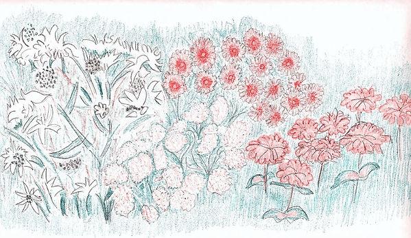 Pollinator Garden by Nina.jpg