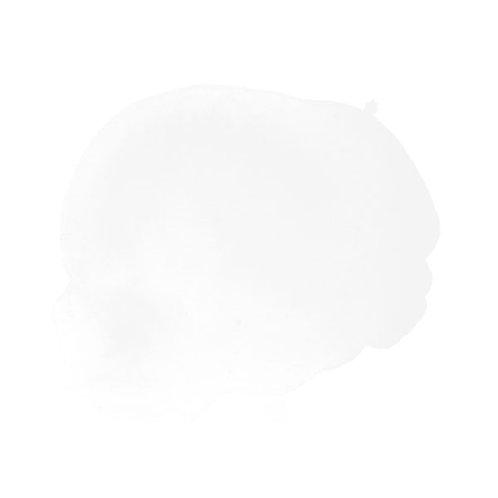 DR AquaFine 001 Chinese White