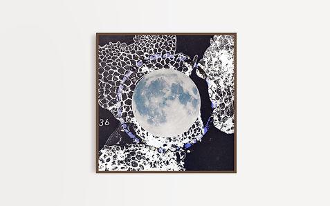 new moon01.jpg
