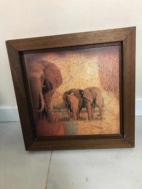 CUADRO ANIMALES AFRICA (3)