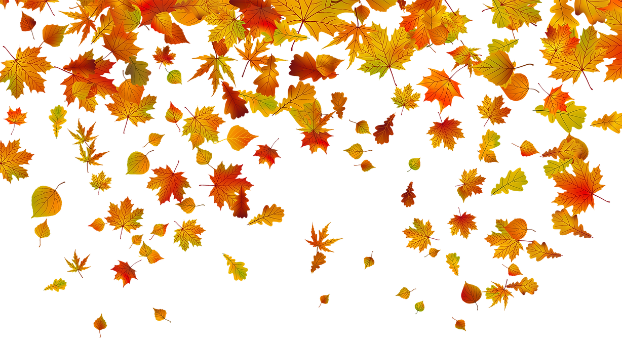 transparent-fall-leaves-png-clipart-imag