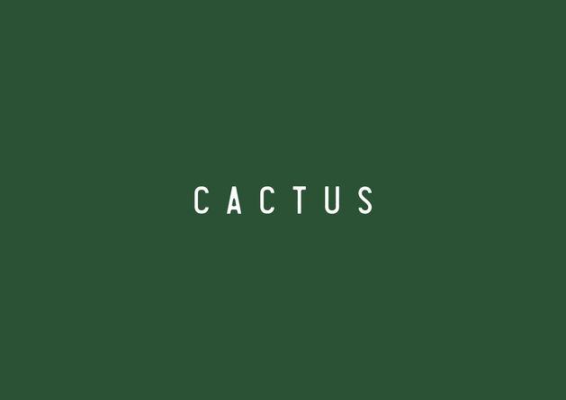 190902 cactus screen-01.jpg