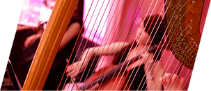 Classical Music 古典音樂