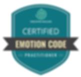 emotion code.png