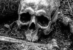 spare the dead_400.jpg