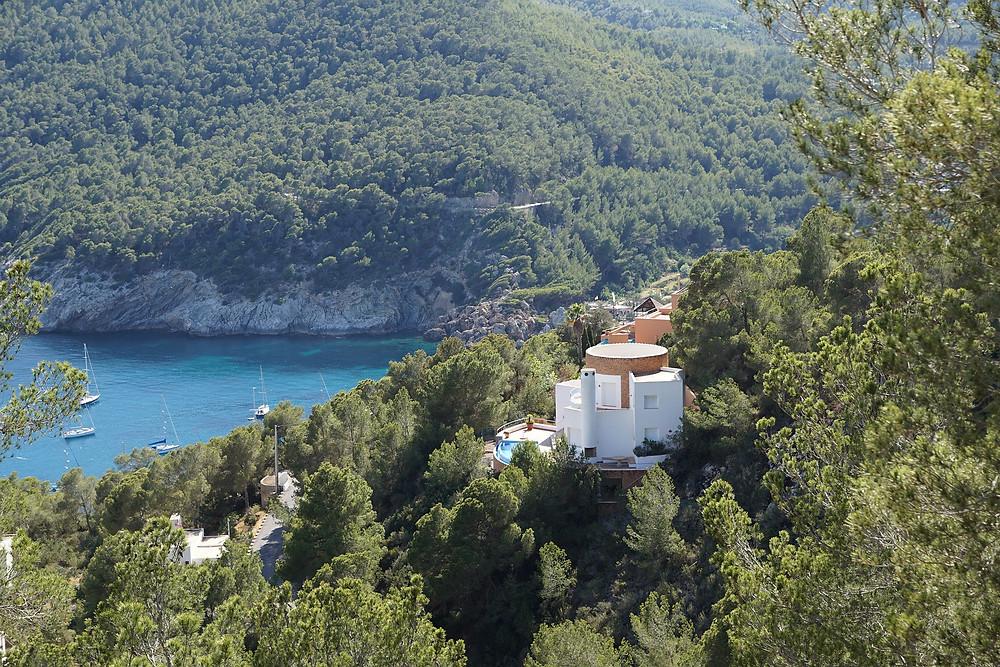 Ibiza natura pini