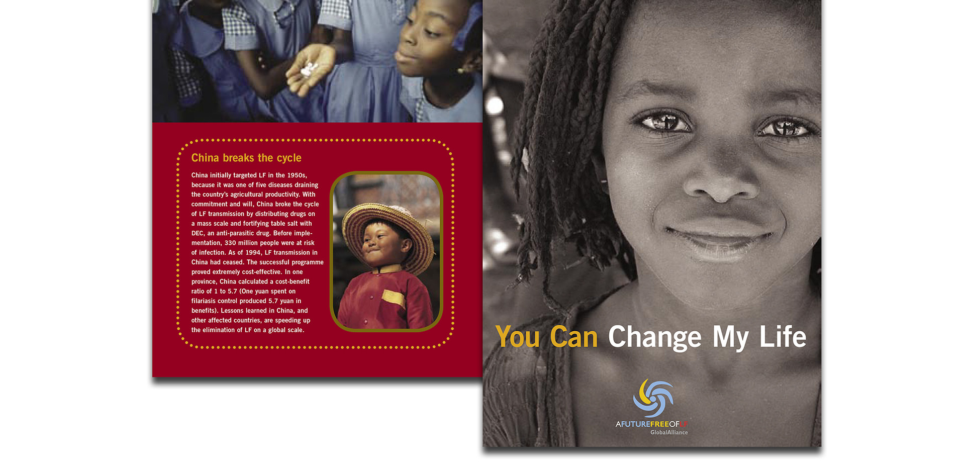 The LF Center brochure gave an overview of capabilities for this Nonprofit affiliate with the international LF organization.