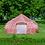 Thumbnail: Fiesta Bell Tent