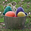 Thumbnail: Giant Egg and Spoon Race