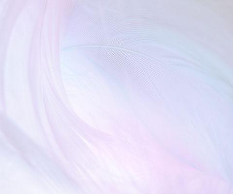 background-4_2x.jpg