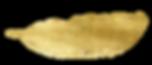 41c8bf1e-4e6a-41b2-a439-c34126f7d5e4.png